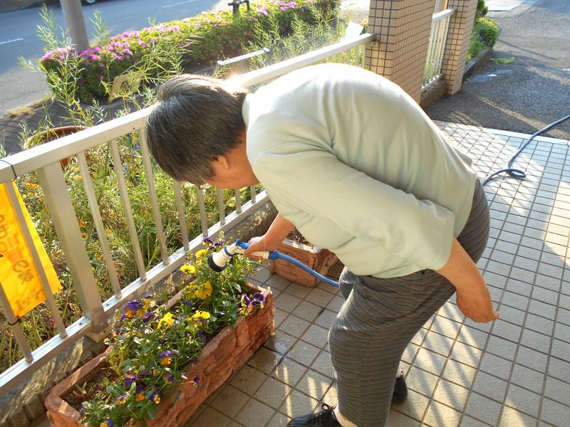 花壇に水まき