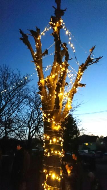 バット博士記念ホームでクリスマスイルミネーション点灯式