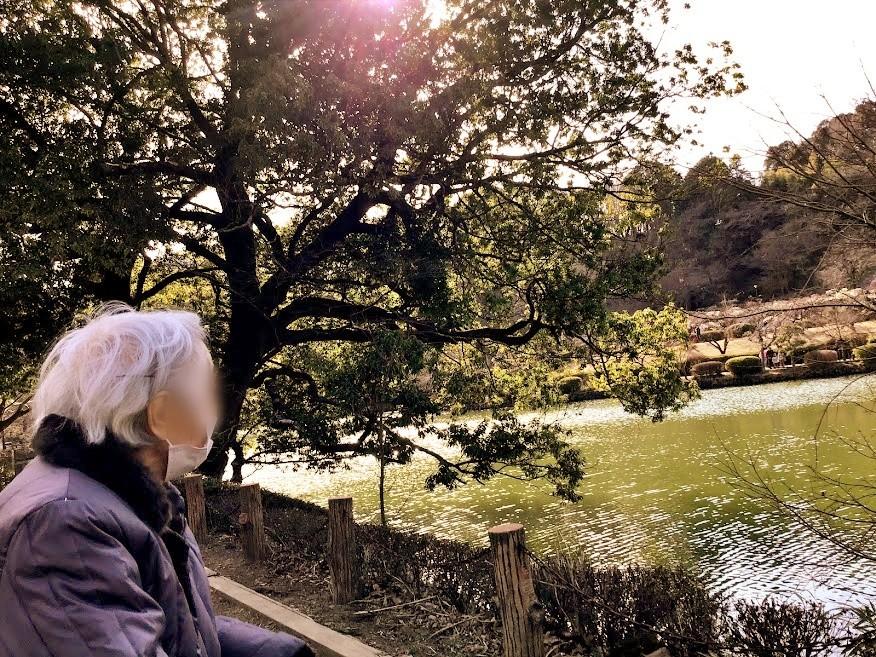 薬師池公園へお散歩