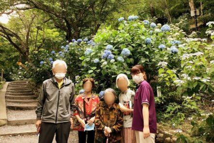 高幡不動へ紫陽花見学