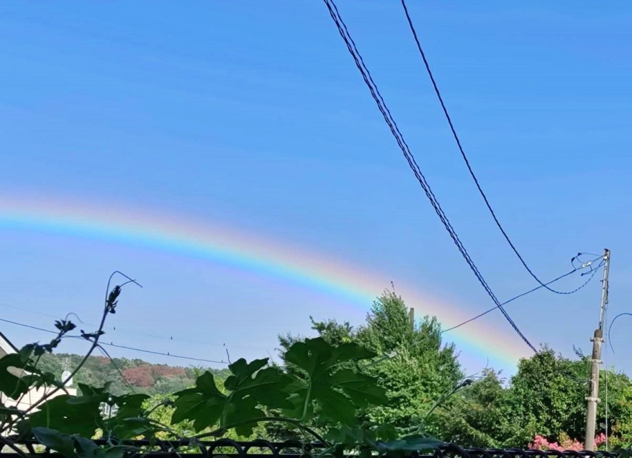 虹が見えました