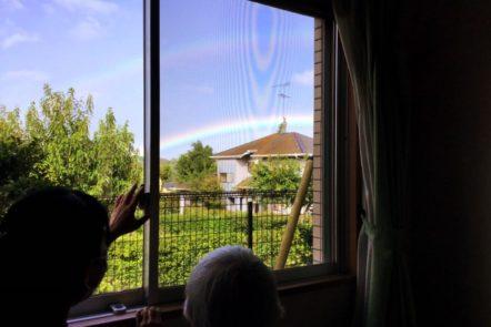 あー虹が出てるよ